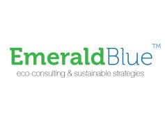 Emerald Blue corporate identity and website